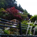 まるで別荘!日本一綺麗な水、中津渓谷「仁淀ブルー」が楽しめる「ゆの森」に宿泊しました