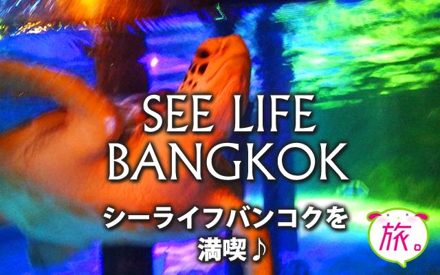 サイアムの水族館「シーライフバンコク」(SEA LIFE Bangkok)はなかなかレベルが高い!実際に行ってみた感想