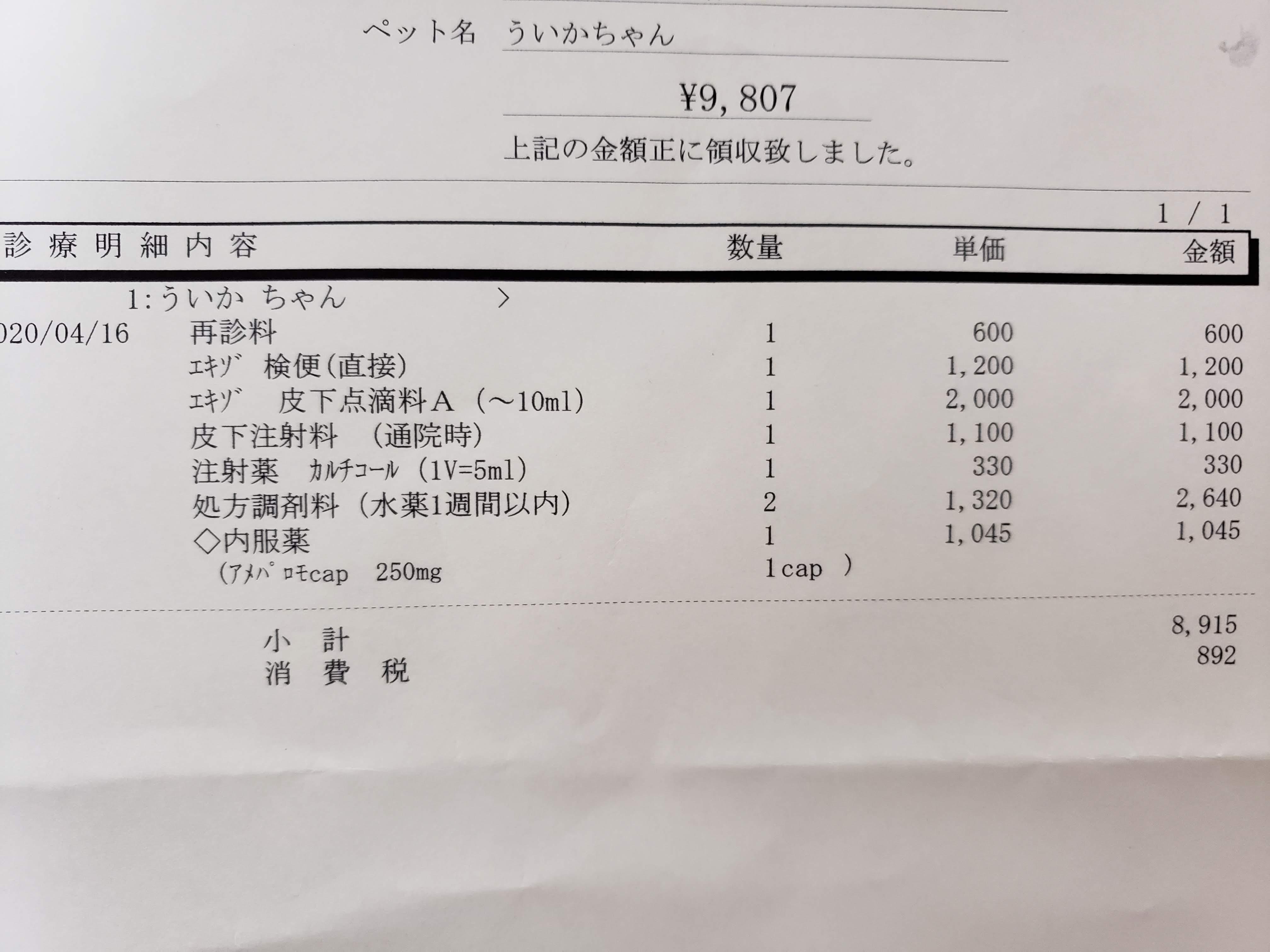 レオパードゲッコーを動物病院に連れて行ったときの費用を実例で紹介します(case:下痢・吐き戻し)